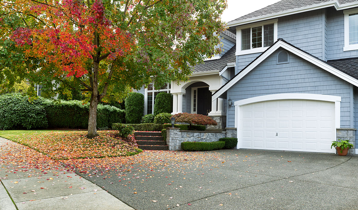 home in fall leaves