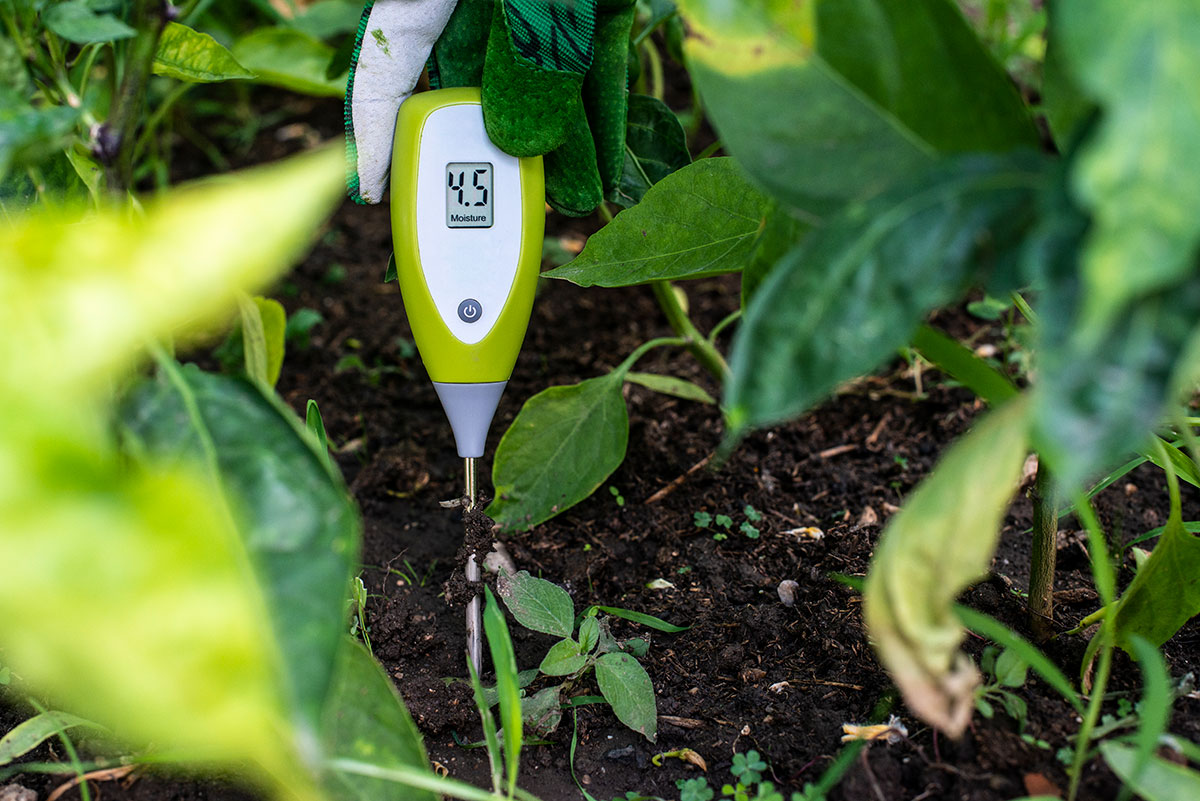 Conserve-Water-In-Summer---soil-moisture-meter