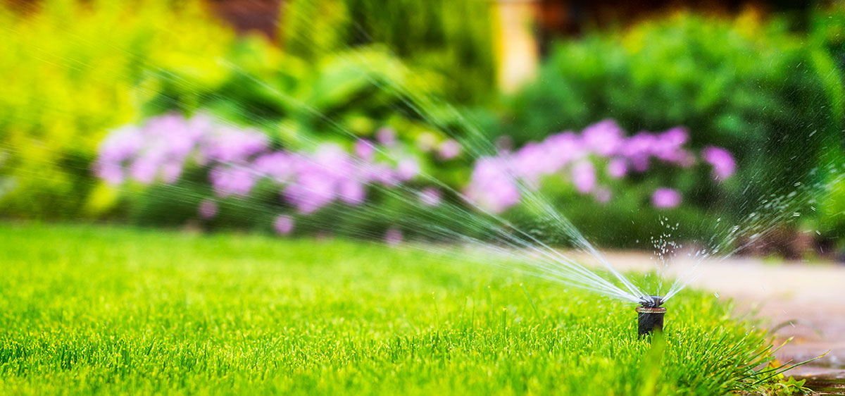 conserve-water-in-summer---sprinkler_in-text-&-featured